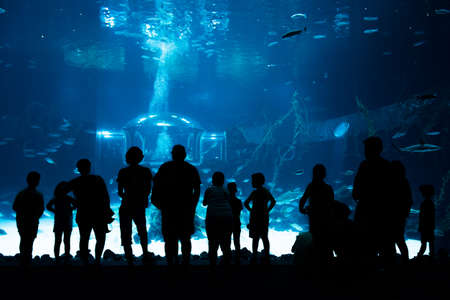 Las Palmas de Gran Canaria, Canary Islands, Spain - July 1st 2018: Visitors enjoy beautiful view of marine life in the biggest tank of new Aquarium Poema del Mar, with the largest curved window of methacrylate for exhibition, which exists in the world. Editorial