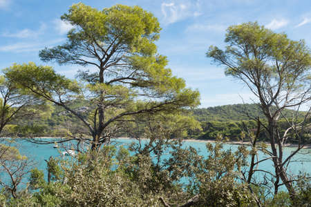 Beautiful bay in Porquerolles island, archipelago of the Îles dHyères, in the south of France. Stock Photo