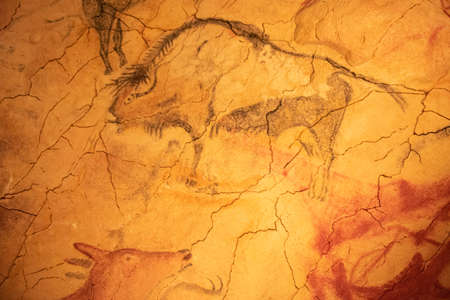 The Altamira Caves, Cantabria. Spanish rock art. It is the highest representation of cave painting in Spain