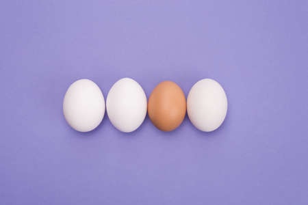 Leadership concept. Top above close up view photo of three same eggs and one egg with brown shell isolated over violet color background
