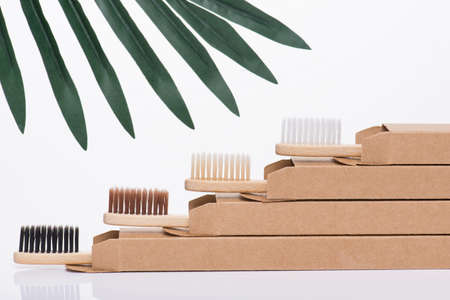 Zero waste dentistry concept. Close-up side profile view photo of eco-friendly modern fresh toothbrushes in packaging isolated on white background with some green leaves