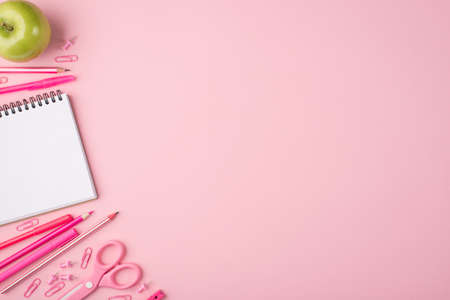 Back to school concept. Top above overhead view photo composition of apple and colorful stationery isolated on pastel pink background with copyspace