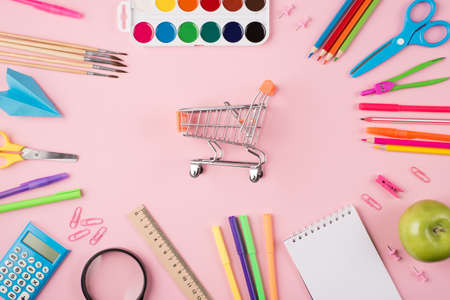 Back to school shopping concept. Top above overhead view photo of colorful stationery around small shopping cart isolated on pastel pink background