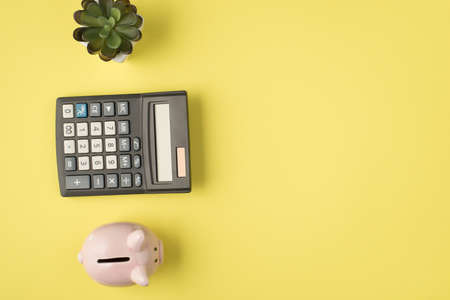 Top view photo of plant calculator and piggy bank on isolated pastel yellow background with copyspace