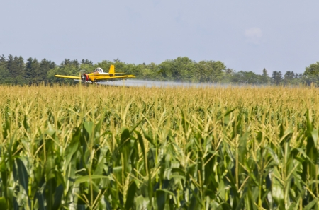 A agricultural plane dusts crops against a blue sky Stock Photo