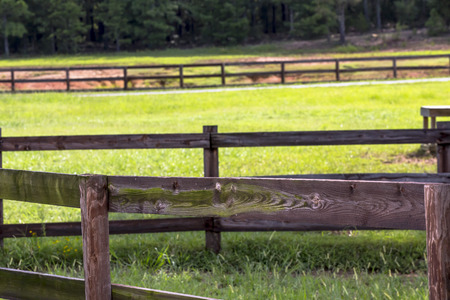 Horse farm with fencing and green pastures photo