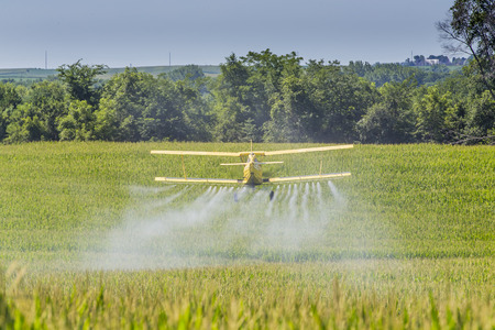 corn crop: A crop duster applies chemicals to a field of vegetation.