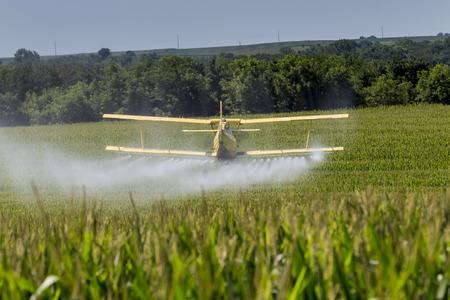 작물 살포는 식물의 필드에 화학 물질을 적용합니다. 스톡 콘텐츠