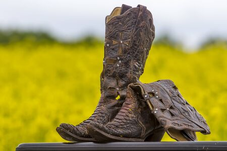 A pair of cowboy boots in a field of flowers Stock Photo
