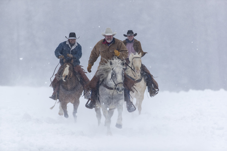 Cowboys round up a herd of horses as theyre running through the snow in the mountains