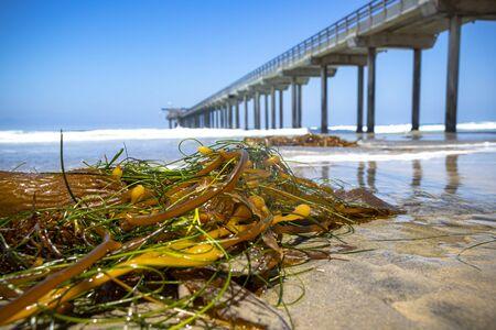 Waves crash into a pier on the California coast