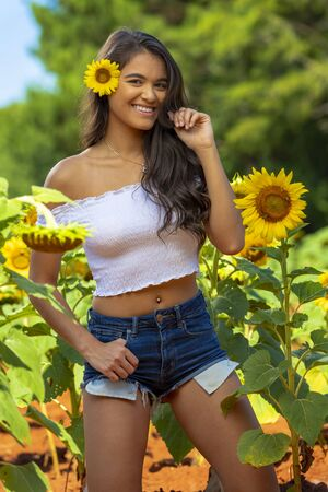A beautiful Asian Brunette model posing outdoors in a field of sunflowers 版權商用圖片