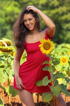 A beautiful Green Eyed Brunette model posing outdoors in a field of sunflowers Banque d'images