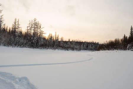 Scenic landscape of snowy road in winter forest. Standard-Bild