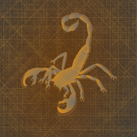 Tattoo art, sketch of a scorpion