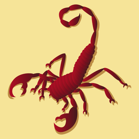 Tattoo in the form of the stylized scorpion Vector