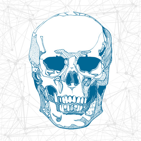 Hand drawn skull with science elements background. Vector illustration.