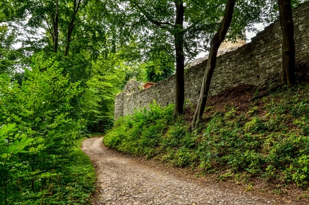 Green forest landscape. A gravel road near the walls of the ruins of the castle. Stock Photo