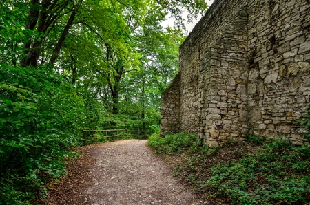 relic: Green forest landscape. A gravel road near the walls of the ruins of the castle. Stock Photo