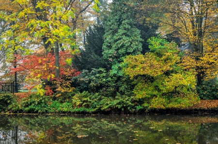 Autumn colorful landscape. Colorful trees and pond in urban park.