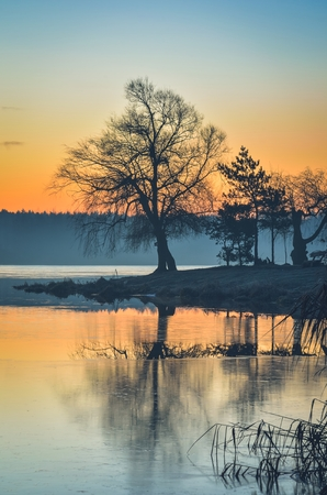 Beautiful morning landscape. Tree on the peninsula at the lake at sunrise. Stock Photo