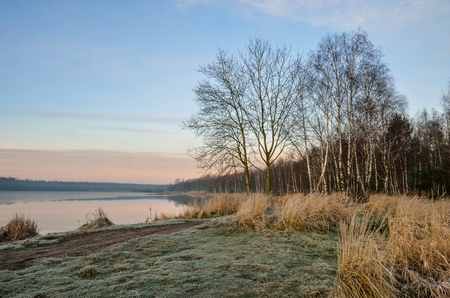Beautiful winter nature. Morning on the shore of the lake. Stock Photo