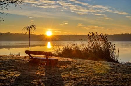 Beautiful sunny landscape. Bench on the edge of the lake at sunrise.