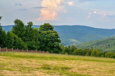 Beautiful mountain landscape. Spring colors in the hills. Banco de Imagens