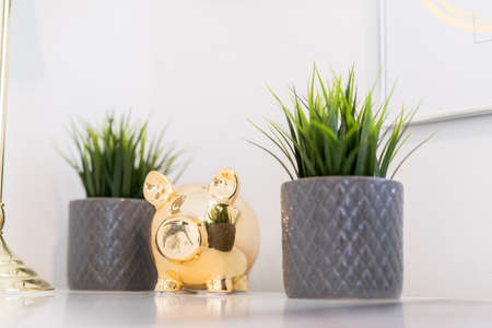 golden piggy bank on a table with plants in pots