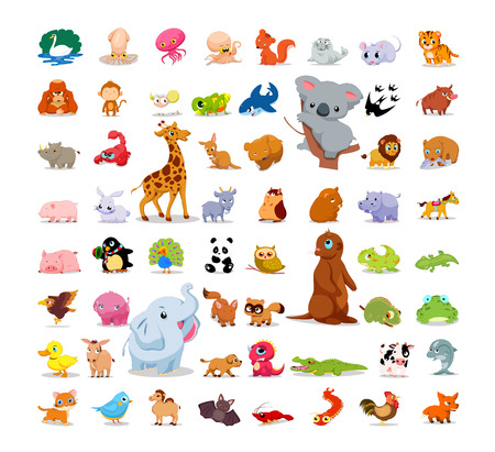 zoo animals: Animals and birds set