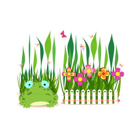 horizon over land: fence with spring flowers and frog