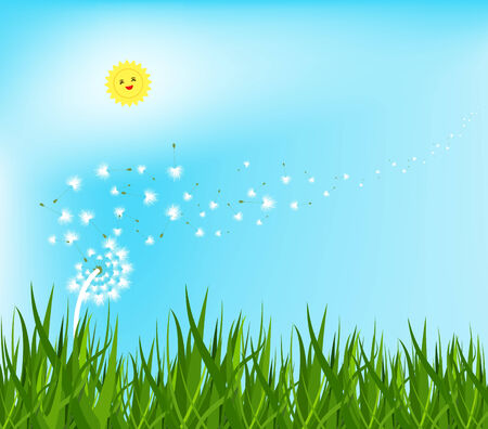 horizon over land: spring background with white dandelions