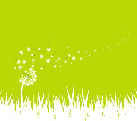 horizon over land: spring with dandelion background