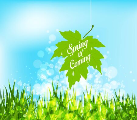 western script: Spring is coming hanging leaf on a strings
