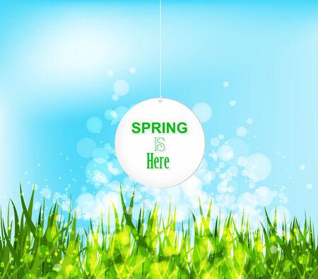 western script: spring is here illustration