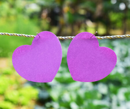 couple purple heart pin on the wire photo