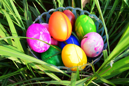 Easter Eggs with Fresh Green Grass over white background photo