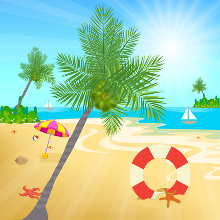 sea shore: coconuts and other beach elements on sea shore