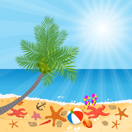 coconut trees: Coconut trees on the beach and sun shining Illustration