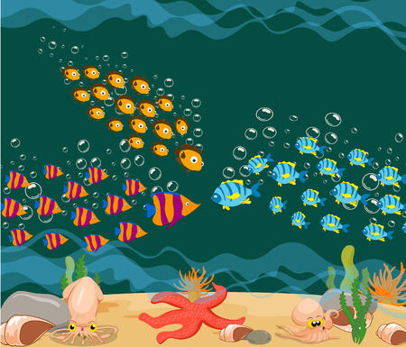 ocean fish. Ocean Underwater World photo