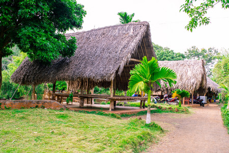 thatched: paleolithic thatched huts Stock Photo