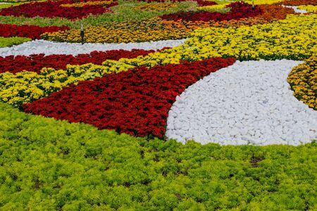 ba: Flower garden at Ba Na Hills, Da Nang, Vietnam