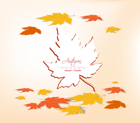 Vector autumn leaf Paper Vector