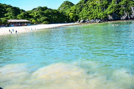 Halong Bay Vietnam. Most Popular place in Vietnam photo