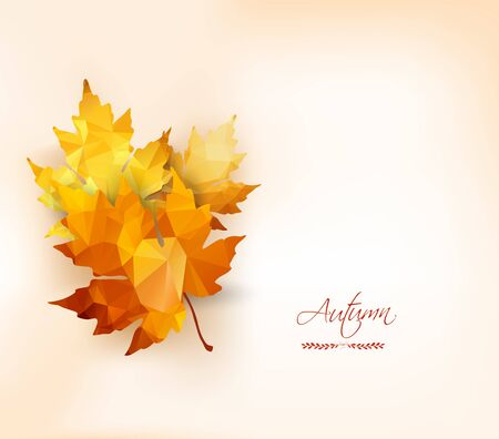 shape vector: Autumn background with geometrical leaves. Back to school