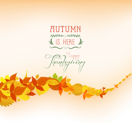 falling leaves: Falling leaves background Thanksgiving