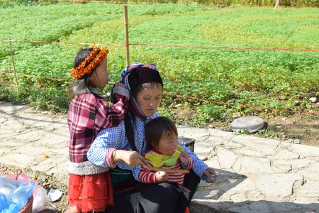 ha giang: Ha Giang, Vietnam - November 08, 2015: The family Hmong in Vietnam, In the northern province of Ha Giang in Vietnam.