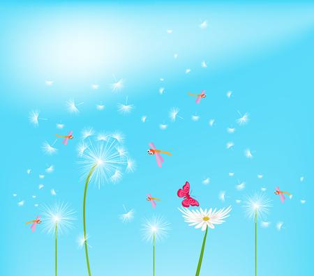 dandelion flower: Dandelion flower field over blue sky Illustration