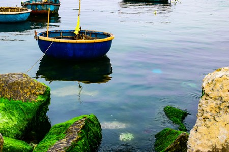 ly: Natural green moss at beach rock with blue sea at Ly Son island, vietnam