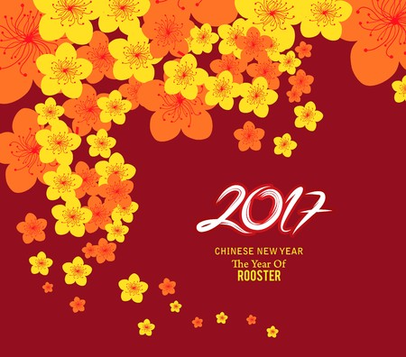 auspicious occasions: chinese new year 2017 template background